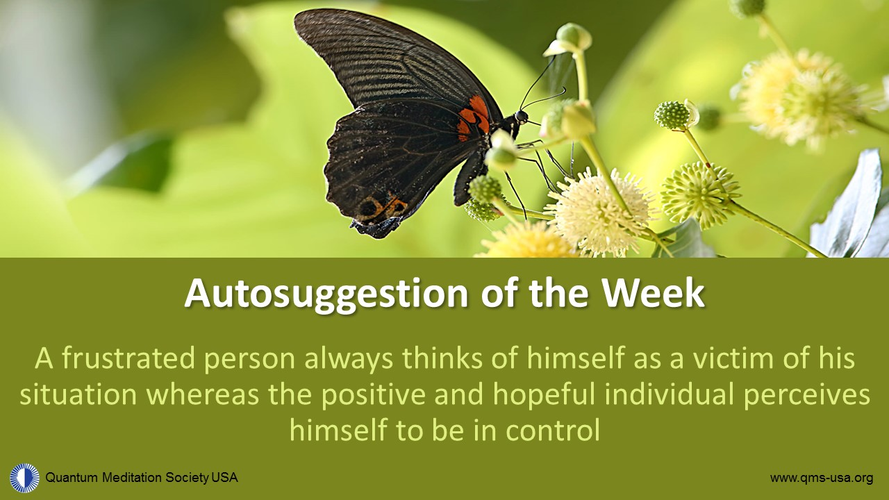 autosuggestion of the week